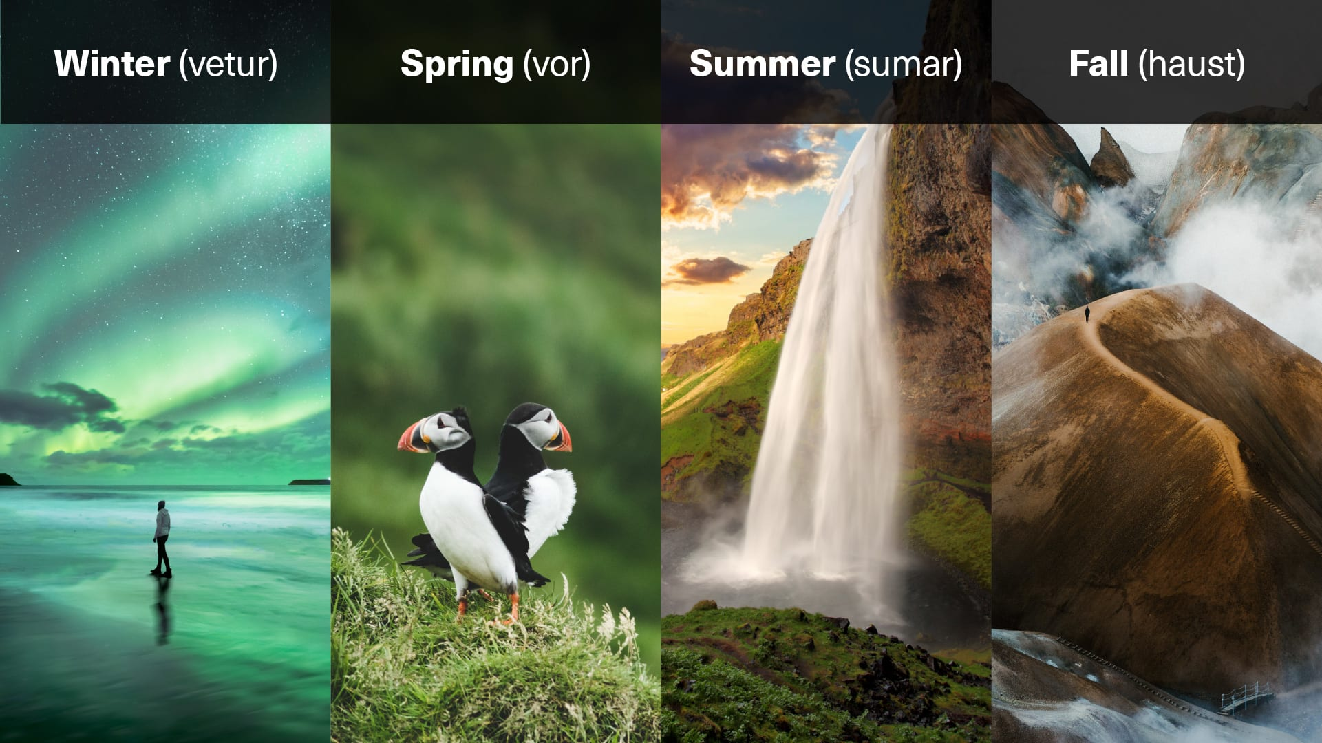 The four seasons in Iceland - winter, summer, spring and autumn - displayed on an illustrative graphic image