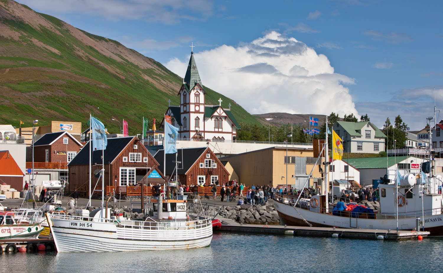 A view of the town of Husavik in North Iceland, pictured from sea