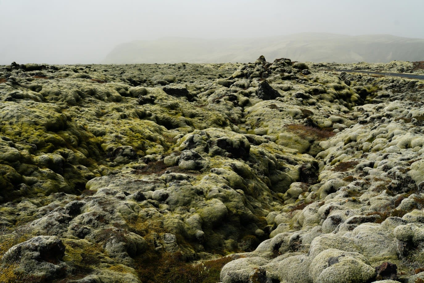 A view of the moss-covered volcanic landscape in Iceland